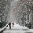 Activamos el primer Plan de los Efectos del Frío para proteger la salud de los madrileños