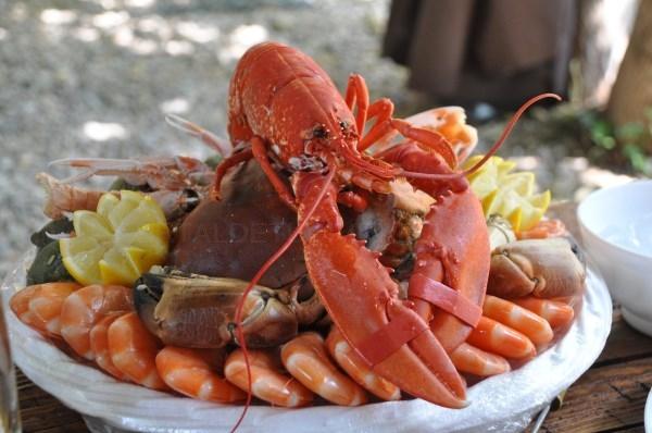 Todo lo que hay que saber sobre el marisco: propiedades, dudas, colesterol, anisaki...