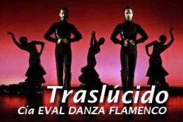 TRASLUCIDO EVAL DANZA