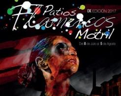 IX EDICION PATIOS FLAMENCOS