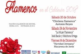 """CICLO """"FLAMENCO EN EL CALDERÓN"""" ANTONIO REYES """"CHICLANA FLAMENCA"""""""