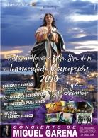 XVIII Fiestas del Barrio  Carrera de la Concepción, en Honor de Nuestra Señora de la Inmaculada Concepción