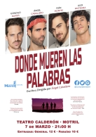 DONDE MUEREN LAS PALABRAS – Ángel Caballero