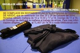 IV Jornadas intensivas de Aikido