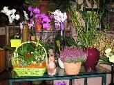 flores, ramos de flores en motril