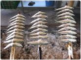 paellas en almunecar, paellas en salobreña, tapas en salobreña, tapas en almuñecar, sopas en motril,