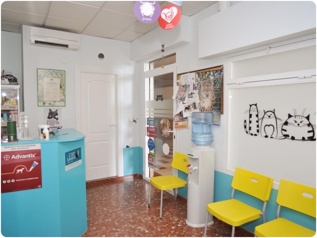 tiendas de animales en motril, pa bichitos en motril, tiendas de animales en salobreña, peluqueria