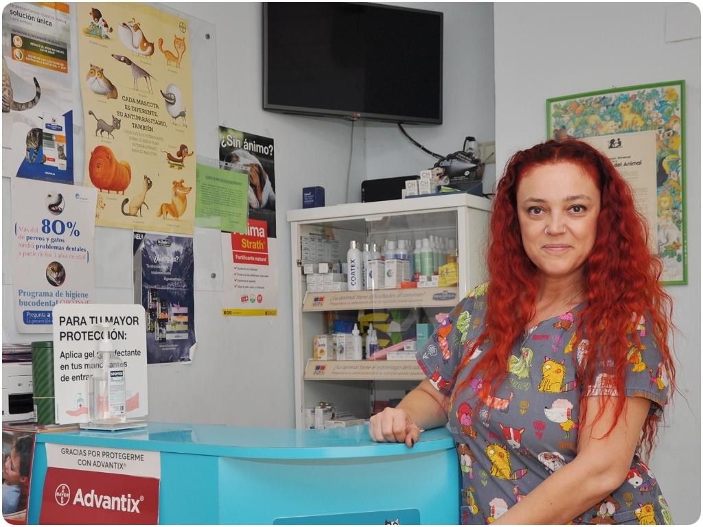 clinicas veterinarias en salobrena, clinicas veterinarias en almunecar, animales en motril, mascotas