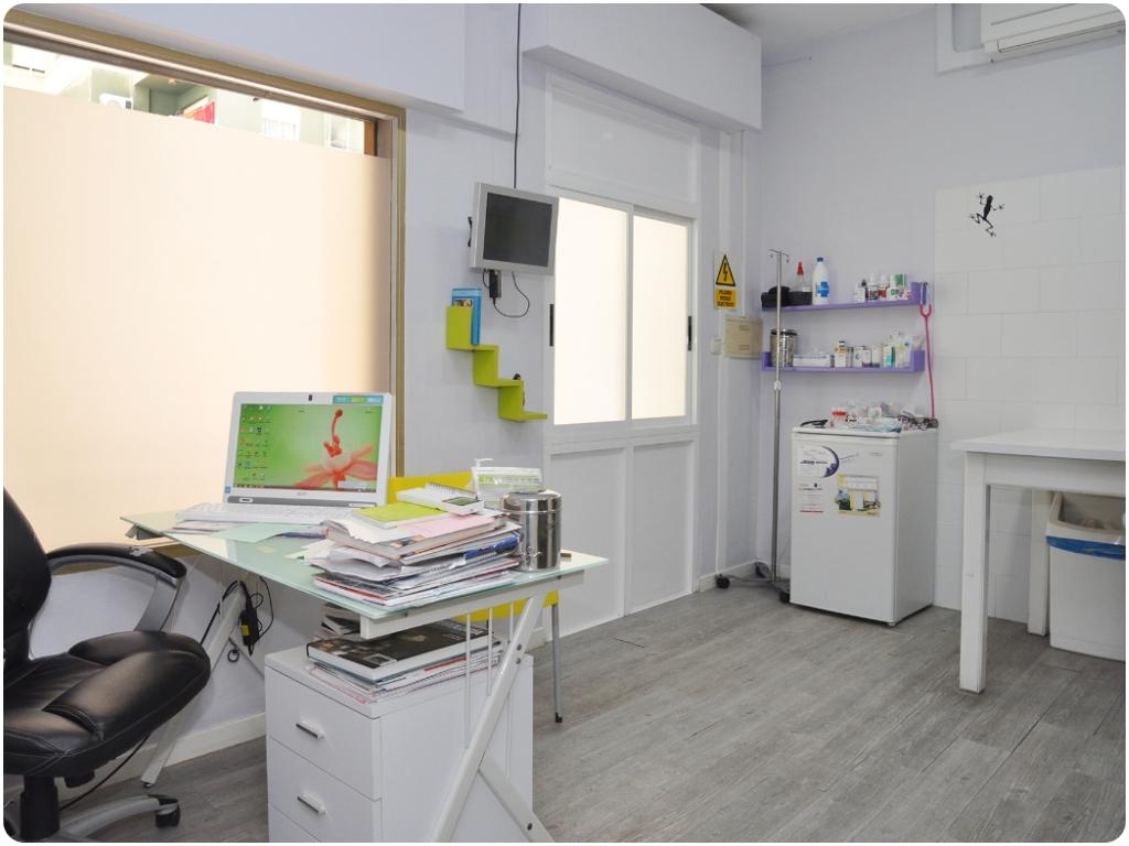 cuidado de animales en motril, cirugia general en motril, recogida de animales en motril, urgencias