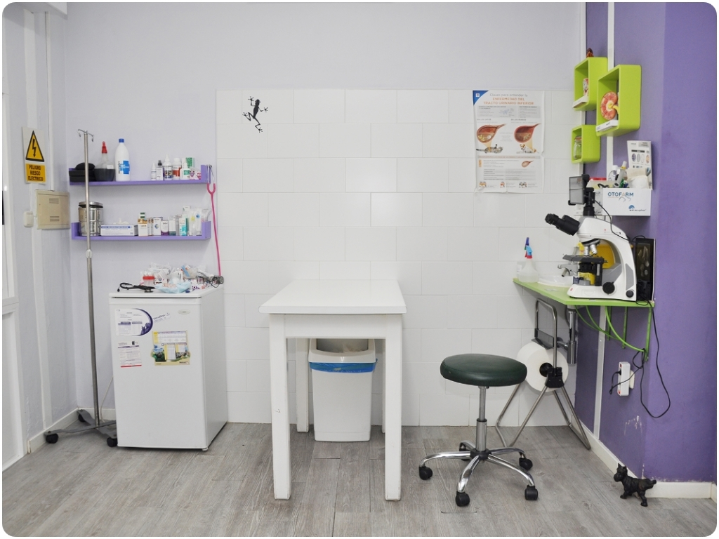 traumatologia en motril, dermatologia en motril, unidad movil en motril, urgencias para mascotas