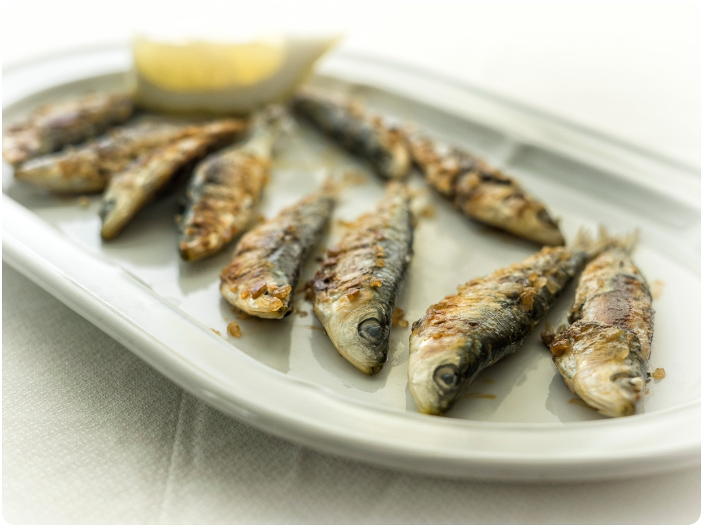 pez espada, calamar, chopitos, dorada, brocheta de pescado, calamaritos,