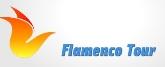 Viajes Flamenco Tour