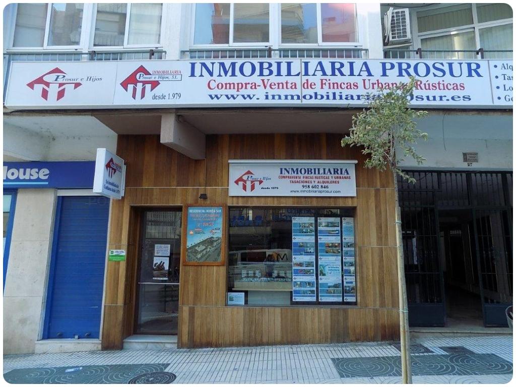 Inmobiliaria Prosur