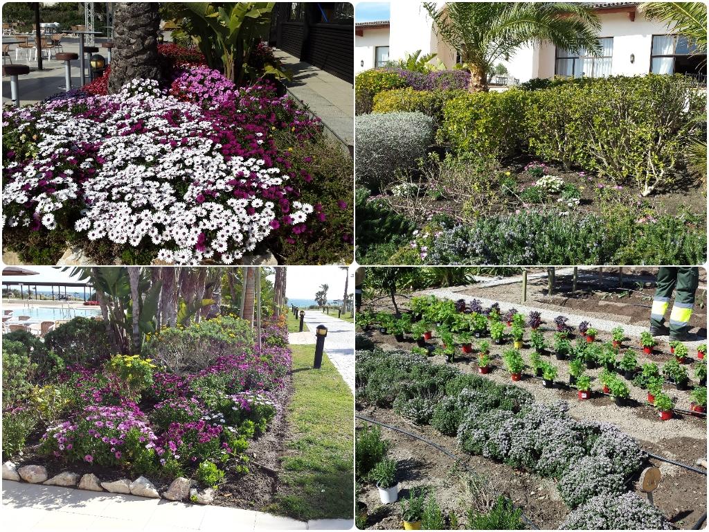 jardineros en orgiva, jardineros en lobres, jardineros en velez de benaudalla