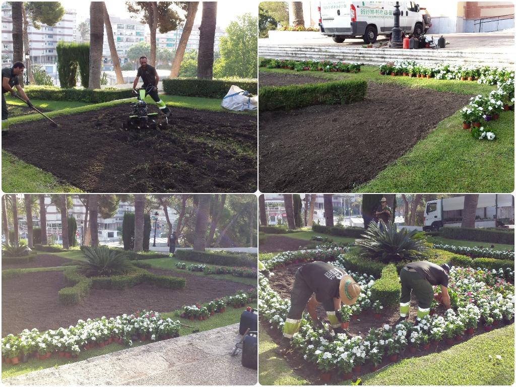 jardineros en la alpujarra, jardineros en la costa tropical de granada, jardineros en taramay