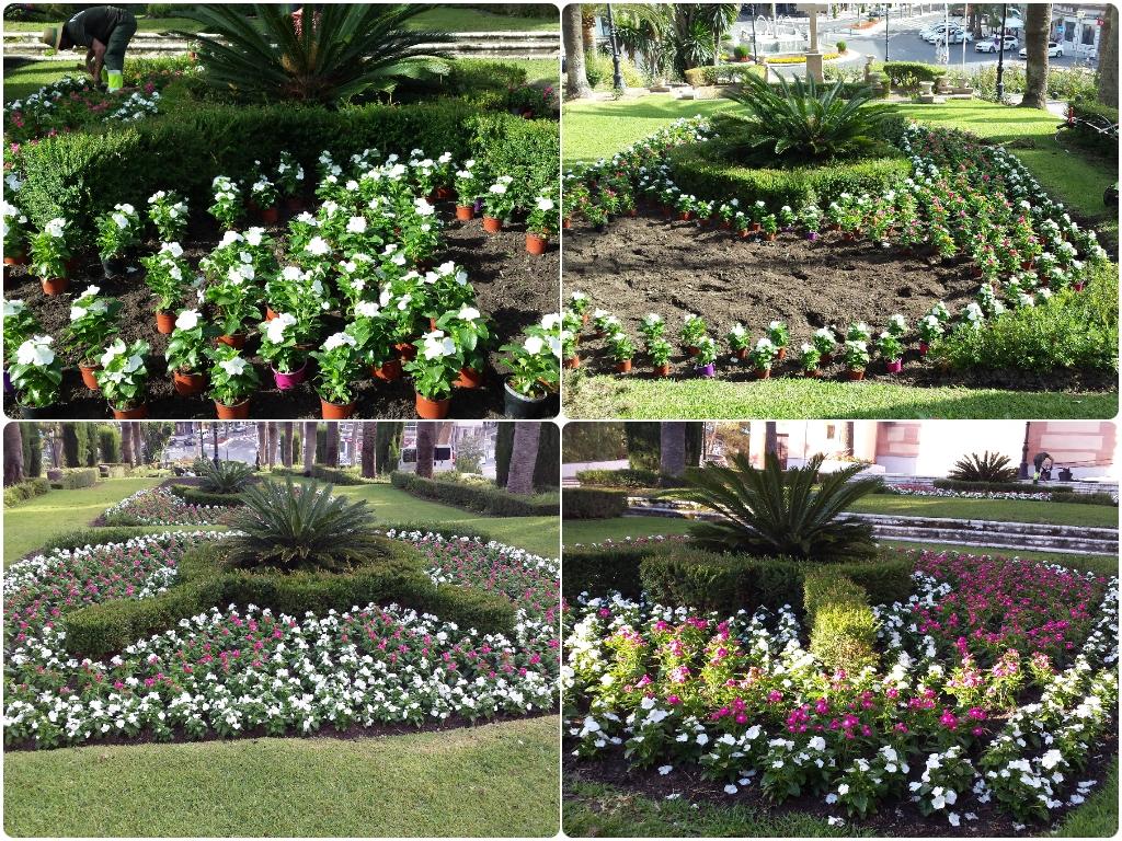 empresas de jardineria motril, jardineros motril, empresas de jardineria en motril