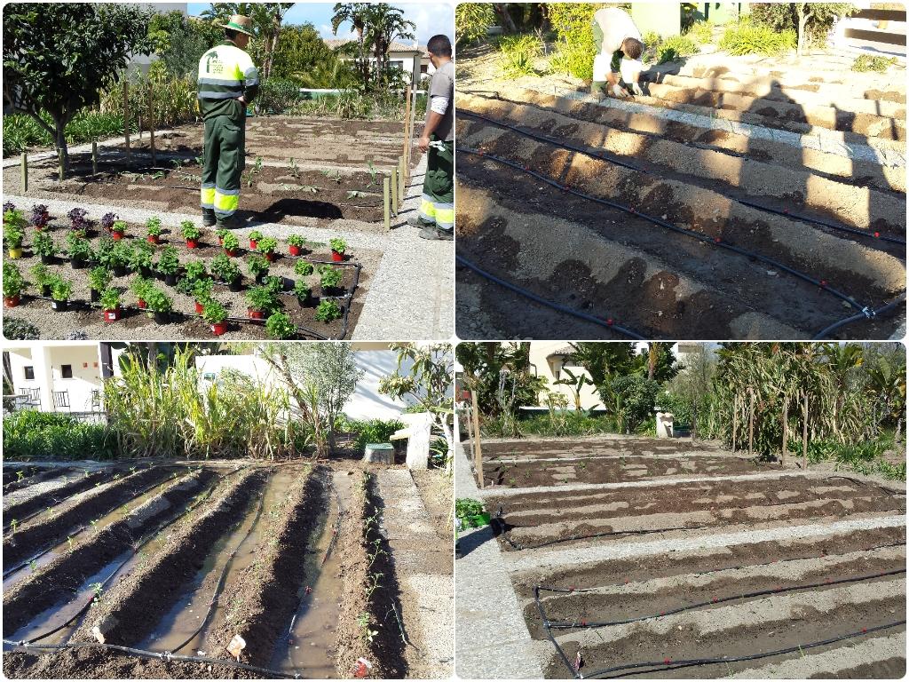 jardineros en calahonda, jardineros en gualchos, jardineros en el ejido