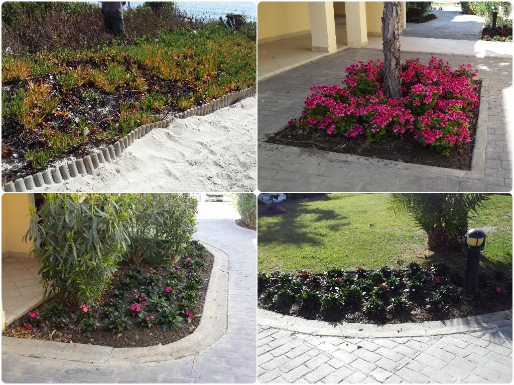 jardineros en la herradura, jardineros en nerja, jardineros en velez malaga