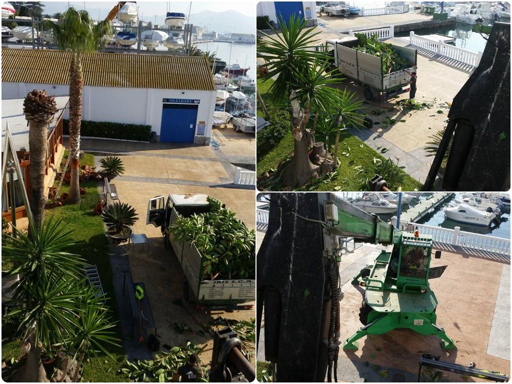 limpieza de comunidades de vecinos, tratamientos fitosanitarios en salobreña, jardineros granada