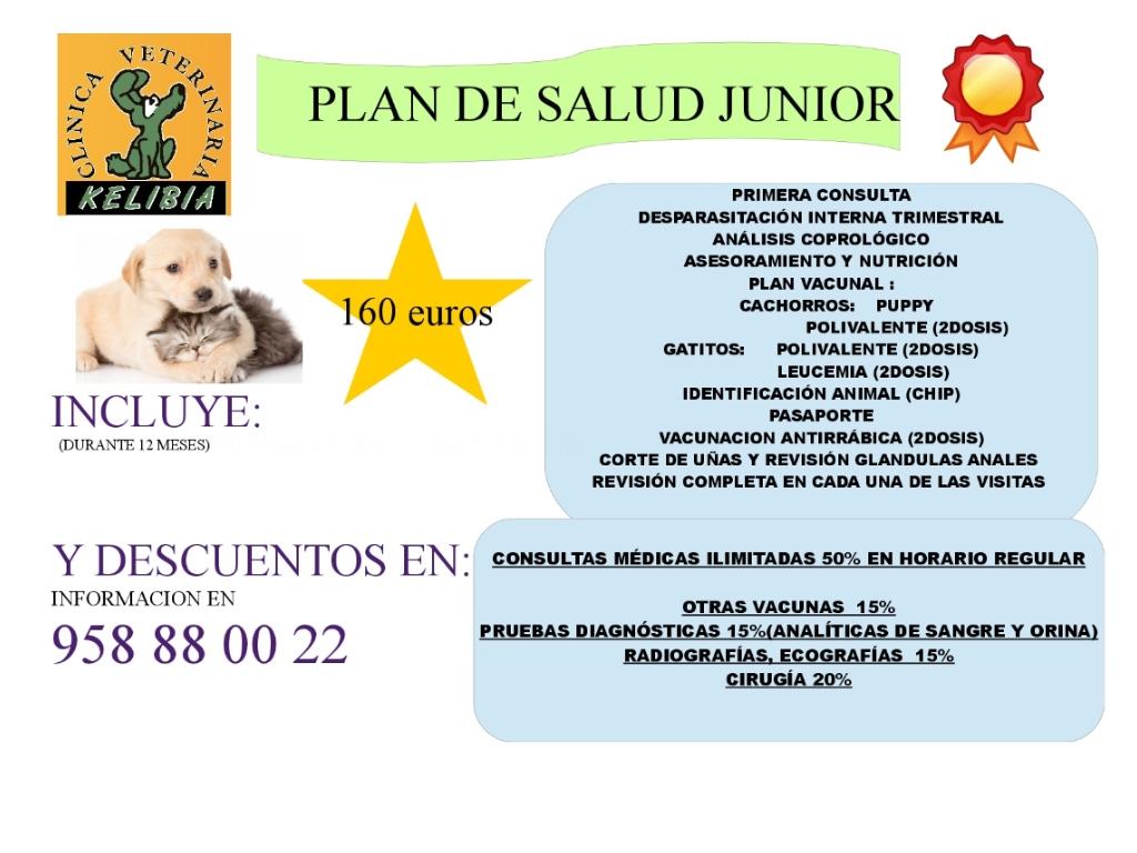 clinicas veterinarias en lentegi, clinicas veterinarias en otivar, clinicas veterinarias en la nerja