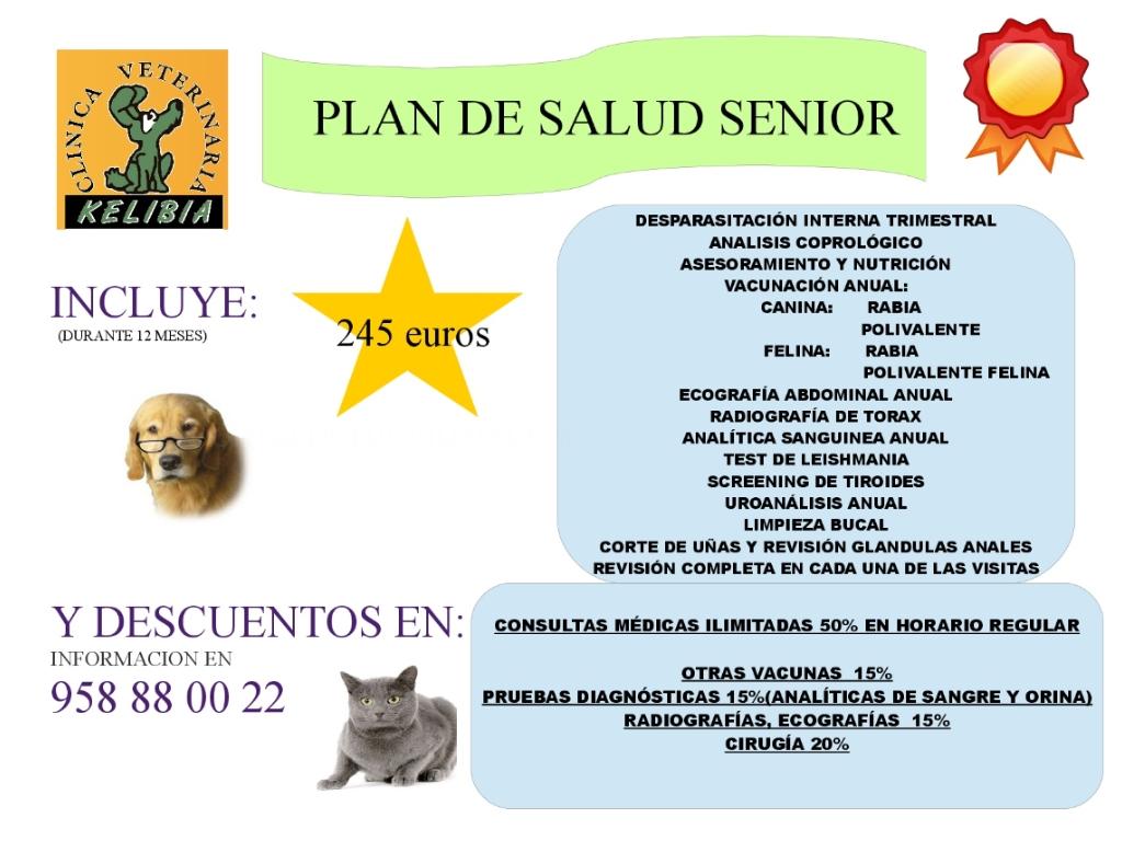 clinicas veterinarias en salobreña, clinicas veterinarias en motril, clinicas veterinarias en malaga