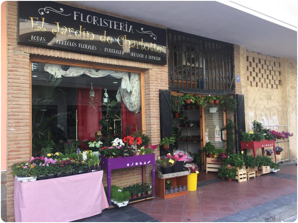 floristeria el jardin de charlotte en almuñecar, floristerias en almuñecar, floristerias almuñecar,