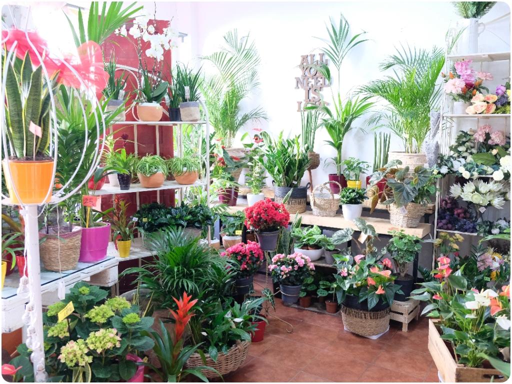 flores naturales en almuñecar, flores artificiales en almuñecar, flores en almuñecar,