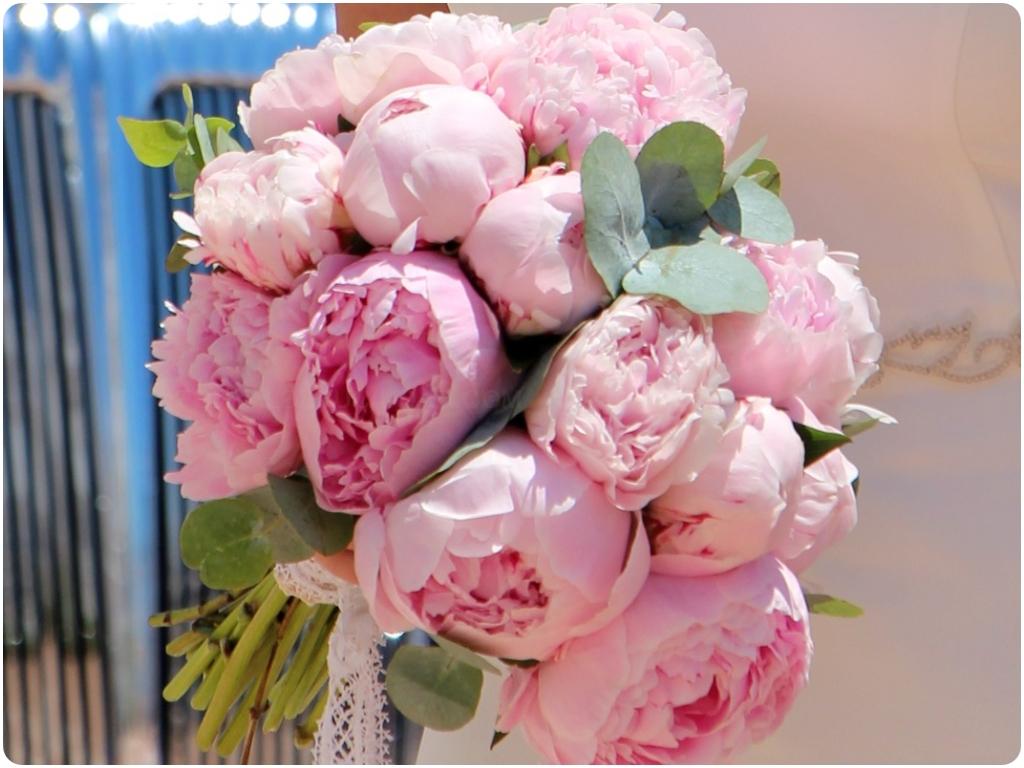 flores regalo almuñecar, regalar flores en almuñecar, regalar flores almuñecar,