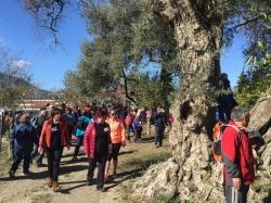 Órgiva prepara la VI marcha solidaria Caminando contra el Cáncer