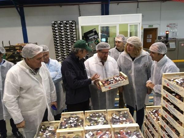 La empresa motrileña 'Hortícola Guadalfeo' obtiene una subvención de la Junta de 800.000 euros para mejorar su maquinaria y ganar en competitividad