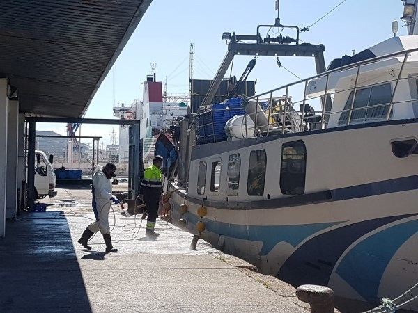 El Ayuntamiento de Motril pone en marcha un operativo de limpieza y desinfección en el puerto pesquero