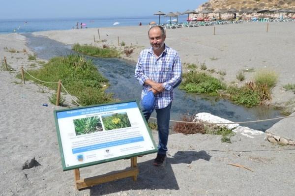 Ayuntamiento y Universidad trabajan en un proyecto de regeneración de la vegetación natural de las playas de Salobreña