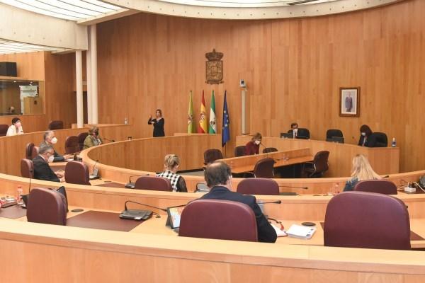 El Pleno provincial tramita la renuncia de Pedro Fernández