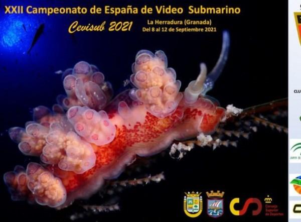El XXII Campeonato de España de Vídeo Submarino comienza este miércoles en La Herradura.