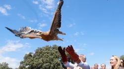 La Comunidad, reconocida por su gestión del Parque Regional del Curso Medio del Guadarrama.