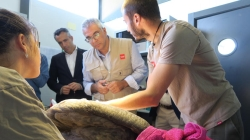 LA COMUNIDAD DE MADRID ATIENDE CADA ANO A UNA MEDIA DE MAS DE 3.300 ANIMALES SILVESTRES HERIDOS EN EL CENTRO DE RECUPERACION DE ANIMALES SILVESTRES.