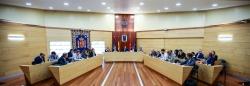 EL PLENO APRUEBA LA NUEVA ORDENANZA DE DECLARACION RESPONSABLE PARA FACILITAR LA APERTURA DE NEGOCIOS EN LAS ROZAS.