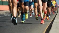 500 corredores participarán este domingo en la I Carrera por la Cañada Real Galiana.