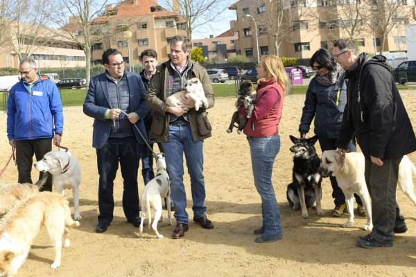 El Ayuntamiento ha recogido 160 animales abandonados en los primeros 5 meses del año.