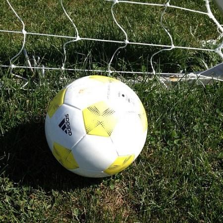 #SOCCER #BALL #FUTBOL #PELOTA (CC BY 2.0) BY RAY BOUKNIGHT