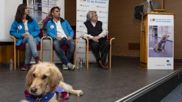 El 12 de Octubre demuestra los beneficios de la terapia asistida con animales.
