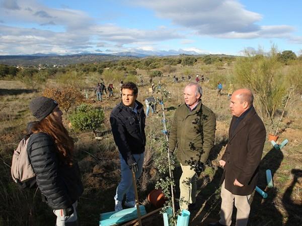 80 voluntarios trabajadores de Hyundai  plantan 600 árboles en la zona de Punta Galea