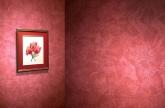 papeles pintados en el campello, venta de papeles pintados en el campello, alisado de paredes en el
