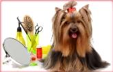 Peluqueria Canina, Tienda de animales