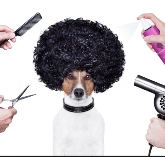 Tiendas de mascotas, Peluquerías caninas