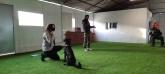Adiestrador de perros Valladolid,preparador de perros para competir en valladolid
