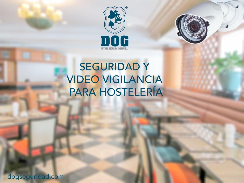 DOG Seguridad y Control