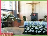 floristeria en parquesol, floristeria amarantus, floristeria en valladolid, flores, comuniones, boda