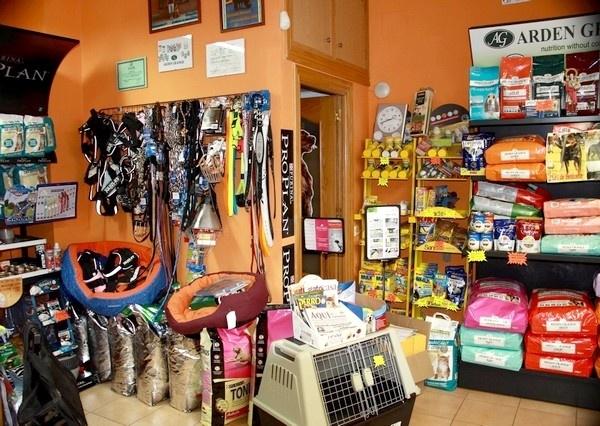 Galería De Fotos Hotel Para Perros En Valladolid Canuber Tiendas De Mascotas Www Canuber Es
