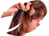 Tratamientos para la regeneración del cabello desde el interior